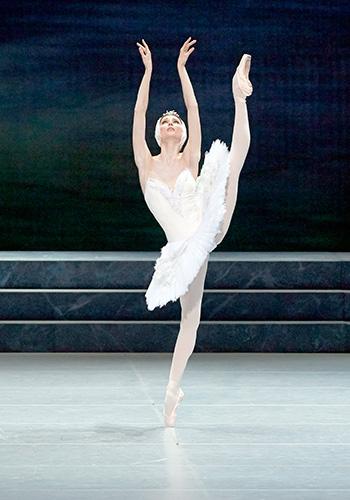 schwanensee ballett termine 2017